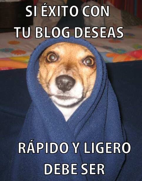 Consejo del maestro perro yoda para los bloggers